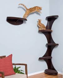 Modern Furniture Shelves by Modern Furniture Design Ideas For Cat Lovers About Pet Life