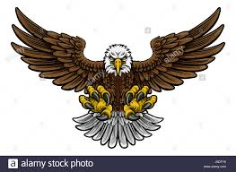 cartoon bald american eagle mascot swooping with claws out and