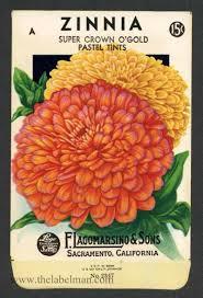 vintage seed packets zinnia 2347 vintage seed packet