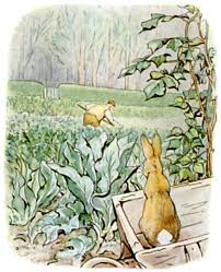 mr mcgregor s garden rabbit the project gutenberg ebook of rabbit by beatrix potter
