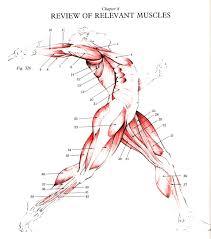 physics of sports course human motion energy mechanics power