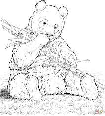 kung fu panda coloring coloring pages itgod