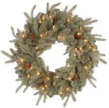 martha stewart wreaths garlands winter plants ebay