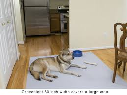 Pet Resistant Rugs Protective Non Skid Carpet Runner For Floors Stairs Hallways