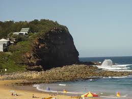 20 Great Dog Walks Around Sydney And Central Coast Australian Copacabana Central Coast Australia