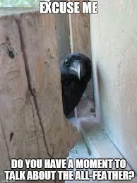 Crow Meme - peekaboo crow meme generator imgflip
