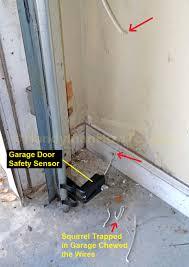 Replacing A Garage Door by How To Fix Garage Door Opener Gallery French Door Garage Door
