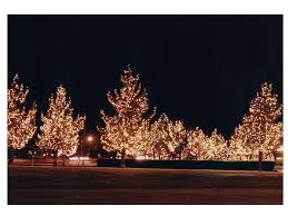 325 best light up the night images on pinterest holiday