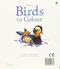 birds colour nature colouring books amazon uk megan