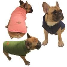 Halloween Costumes Bulldogs Discount Bulldog Halloween Costumes 2017 Bulldog Halloween