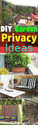 26 diy garden privacy ideas that are affordable u0026 incredible