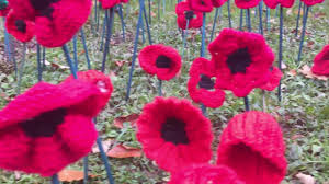 beautiful remembrance day tribute pops up near middlesbrough war