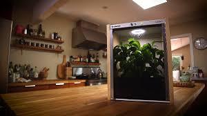 Summer Garden Food Manufacturing - nanofarm the food growing appliance by replantable u2014 kickstarter