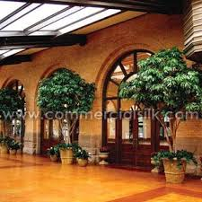102 best artificial trees casino studies images on