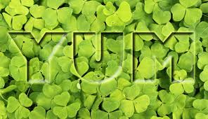 10 vegetarian and vegan dishes for st patrick u0027s day ecorazzi