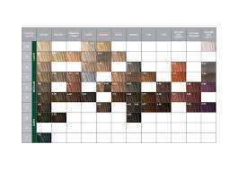 igora royal hair color color to develiper ratio essensity color product range