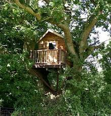 three house simple tips to build a solid tree house tree houses tree house