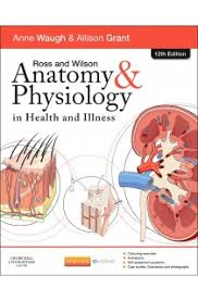 Anatomy And Physiology Glossary Ross And Wilson Anatomy And Physiology In Health And Illness 12th