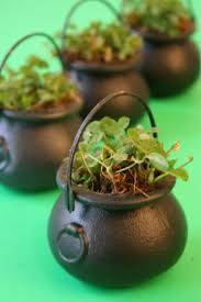 17 best images about st patrick u0027s day on pinterest grow your own