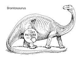 brontosaurus coloring page free coloring kids 5240
