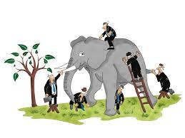 Blind Man And Elephant Illustration Design For Tel Aviv University By Stefan Dragos