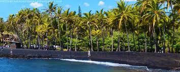 black sand beach big island black sand beach punalu u the big island hawaii