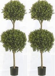 two 56 inch artificial boxwood topiary