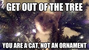 Christmas Cat Memes - christmas tree cat memes quickmeme