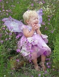 Halloween Costume Fairy Wings 271 Wings Images Fairy Costumes