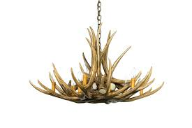 Antler Chandelier Canada Shop Mule Deer Antler Chandeliers Cast Horn Designs