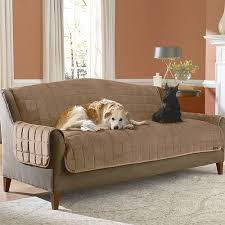 pet sofa covers that stay in place deluxe soft suede pet throw sofa cover at brookstone buy now