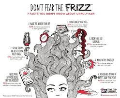 Frizzy Hair Meme - frizz attacking your hair fight back giveaway