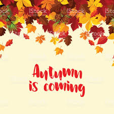 autumn fall leaves vector poster template stock vector art