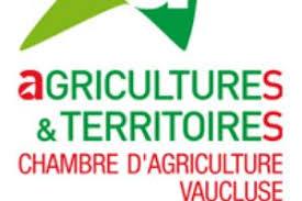 chambre d agriculture du vaucluse vitisphere formation greffer en fente sur porte greffe