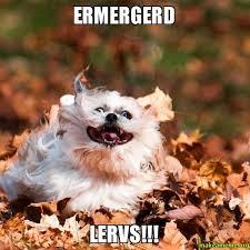 Er Mer Gerd Meme - ermergerd lervs make a meme