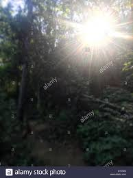 Let The Light Shine Let The Light Shine Through Stock Photo Royalty Free Image