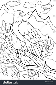 coloring pages wild birds cute eagle stock vector 434191000