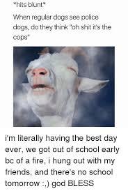 No School Tomorrow Meme - 25 best memes about no school tomorrow no school tomorrow memes