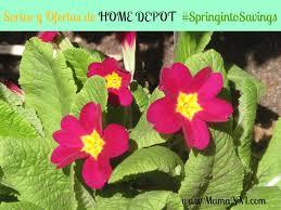 ofertas del black friday en home depot home depot ofertas y super sorteo de primavera springintosavings