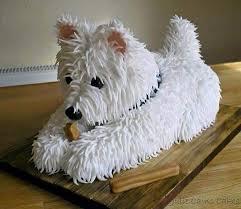 dog birthday cake psbattle dog birthday cake photoshopbattles