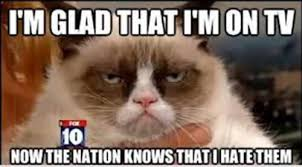 Frown Cat Meme - grumpy cat meme i m glad that i m on tv now the nation knows that