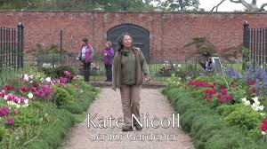 walled garden 5 years on youtube