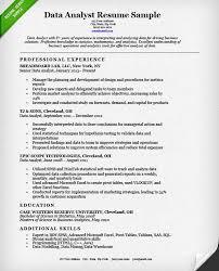 download data entry resume sample haadyaooverbayresort com
