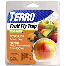 amazon com terro fruit fly trap t2500 home pest control traps