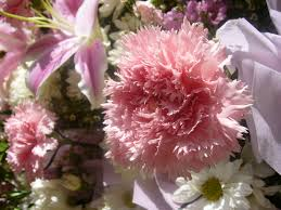 most popular mother u0027s day flower trends flower pressflower press