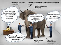 The Blind Men And The Elephant Lesson Plans Integrate General Business Management Into Project Management