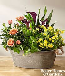 autumn moods blooming dish garden by better homes and gardens at
