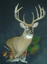 Deer Pedestal Whitetail Deer