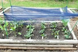 Garden Plans Zone - perennial shade garden plans zone 5 plants for shade gardens zone