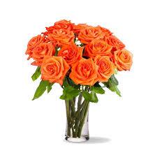 orange roses thanksgiving flowers 12 stemmed orange roses